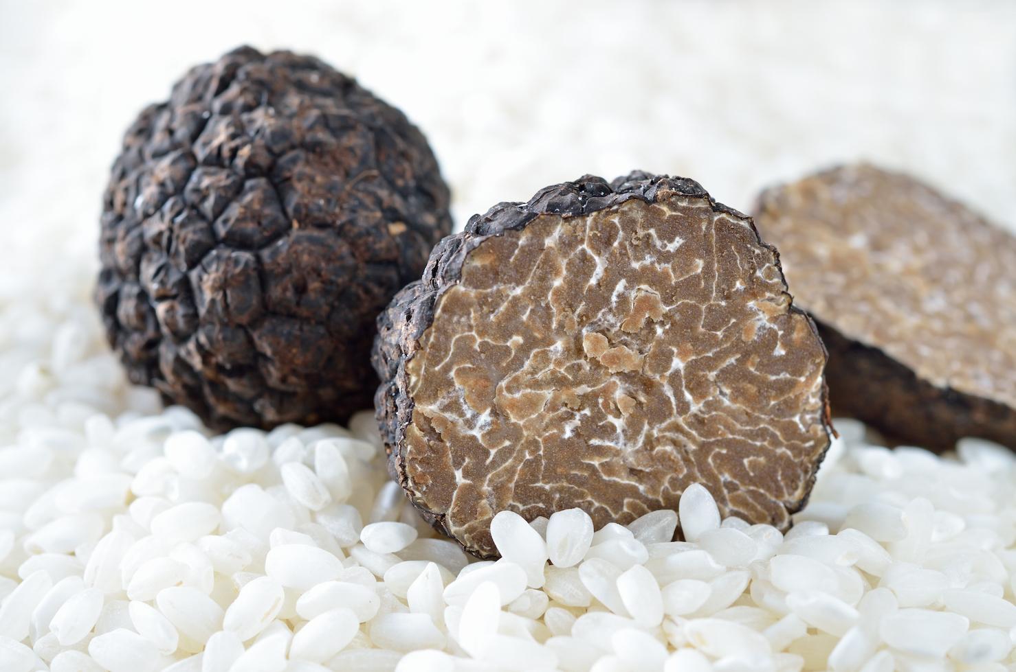 Как готовить грибы трюфели в домашних условиях