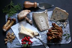 Mushroom Cheese Board