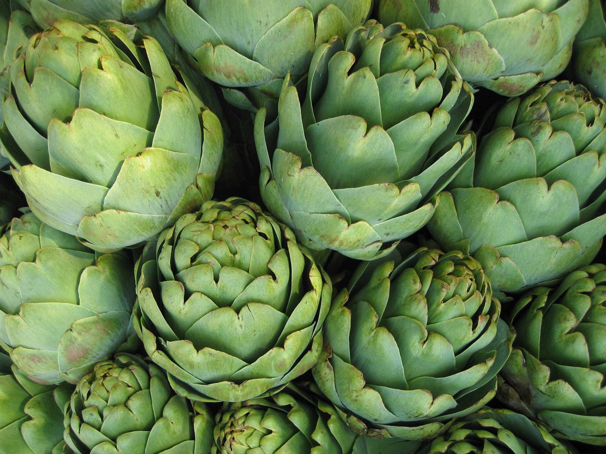artichokes 7 ways to cook these delicious spring blooms blog di